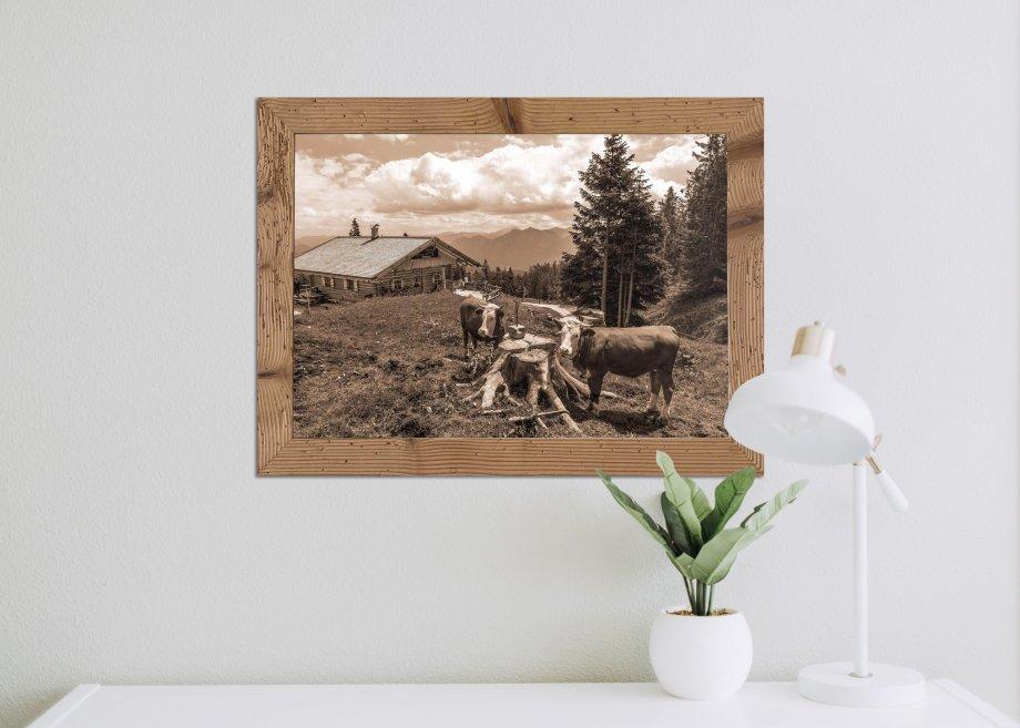 Wallgauer Alm mit Kühen auf Wiese